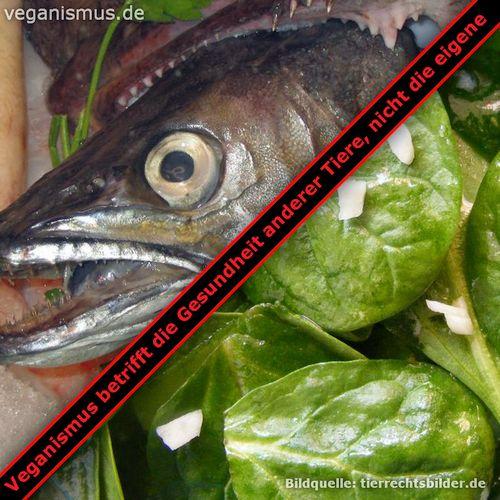 Veganismus betrifft die Gesundheit anderer Tiere, nicht die eigene