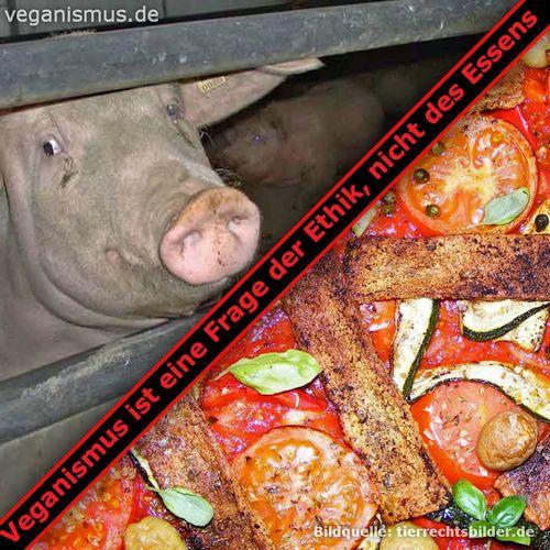 Veganismus ist eine Frage der Ethik, nicht des Essens